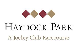 300x200px_Logos_Haydock