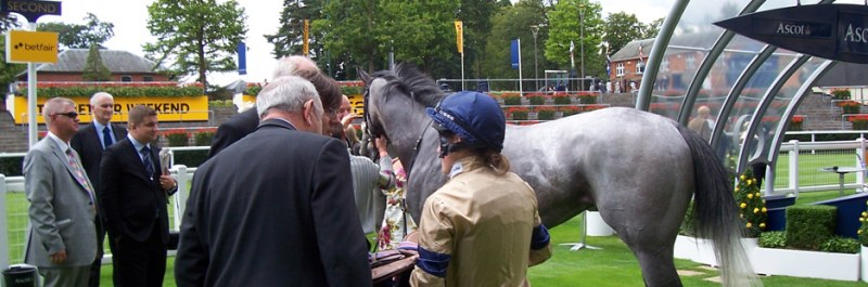 Providing success at Ascot for our affordable horse racing syndicates Hambleton Racing