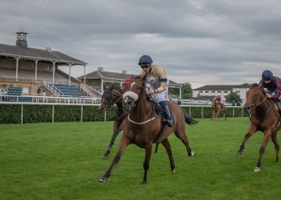 Wild Hope wins at Doncaster