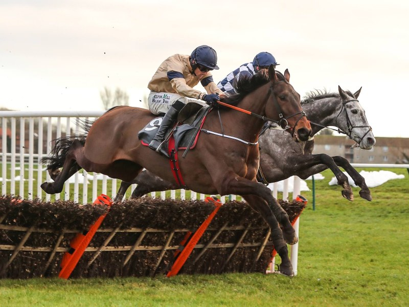 WHOSHOTTHESHERIFF Ridden by Sean Quinlan wins at Ayr 2/1/19 Photograph by Grossick Racing Photography 0771 046 1723