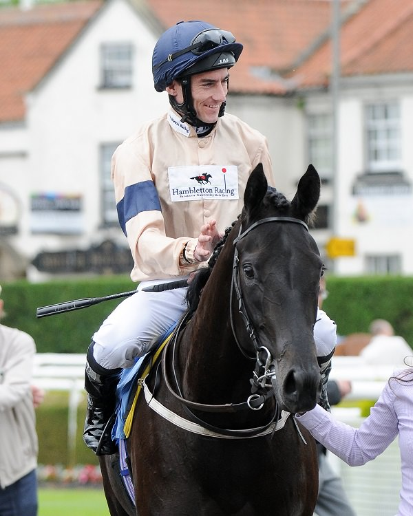 Own a racehorse with Hambleton Racing