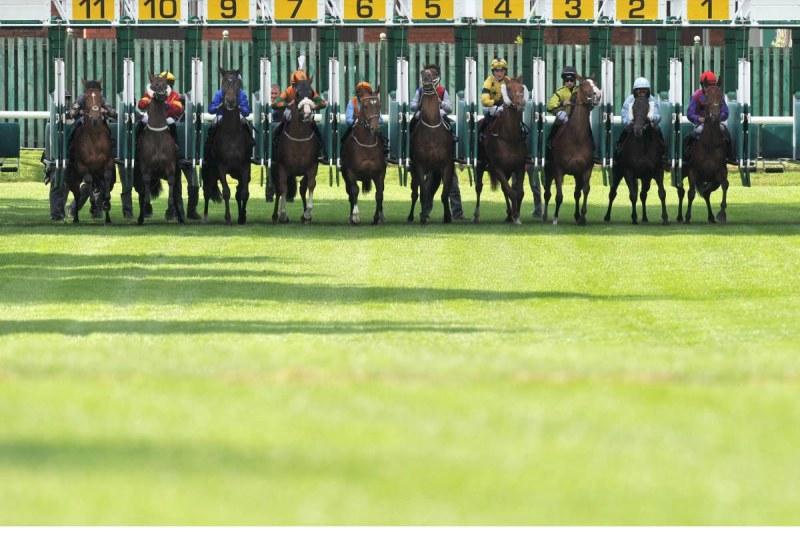 horseracing stalls open