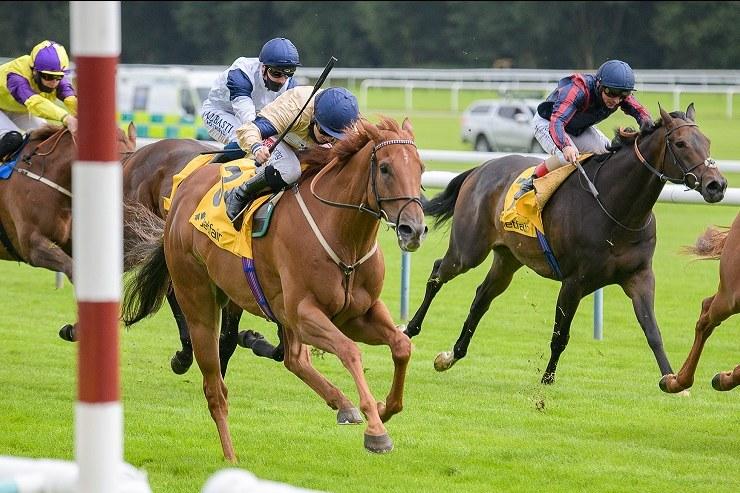 Glen Shiel Horse Racing Syndicate