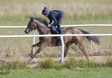 Esken Rose gallops2