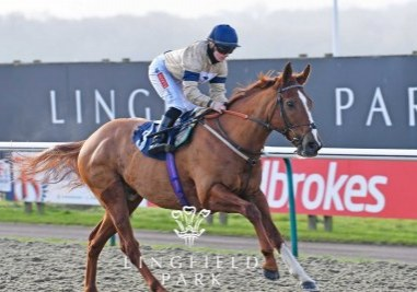 Going Places win Lingfield Park