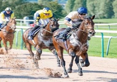 Maystar Wins at Southwell