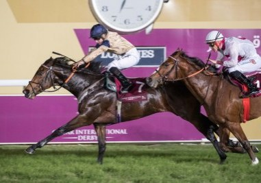 Maystar Win at Doha