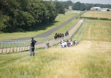 Owners watching on gallops