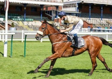 SOARING STAR (Kevin Stott) wins at AYR 24/8/20 Photograph by Grossick Racing Photography 0771 046 1723