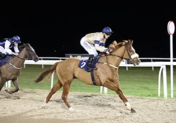 SOUND REASON and Kevin Stott wins at Newcastle 16/2/21