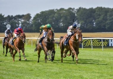 Watchable wins Thirsk