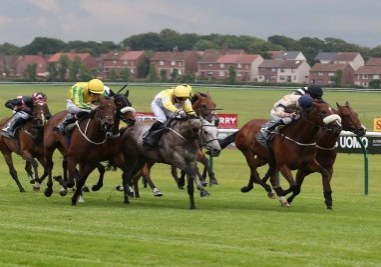 Wild Hope notches second career winWild Hope - Ayr 1