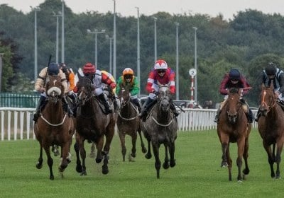Wild Hope wins Doncaster
